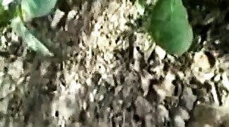 Indian slut outdoor in jungle gets hairy pussy fucked by str